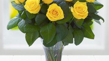vazo sarı gül